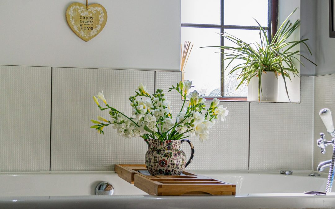 Top 5 Plants to Use in Your Bathroom Décor