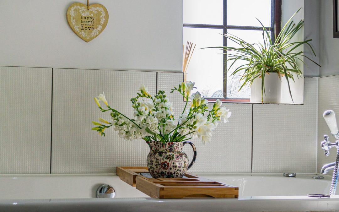 Top 5 des plantes à utiliser dans votre décor de salle de bain